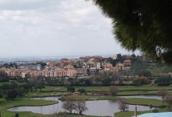 Pavona di Castel Gandolfo