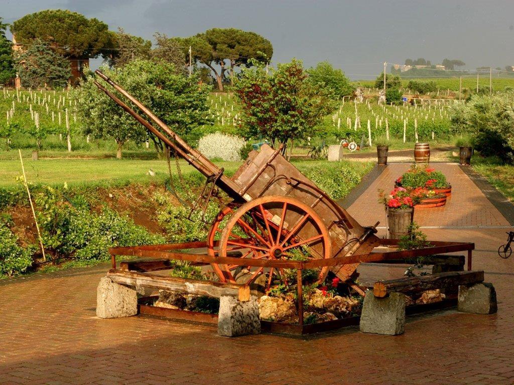 L'Olivella Frascati