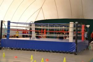 Boxe Fortitudo Monteporzio
