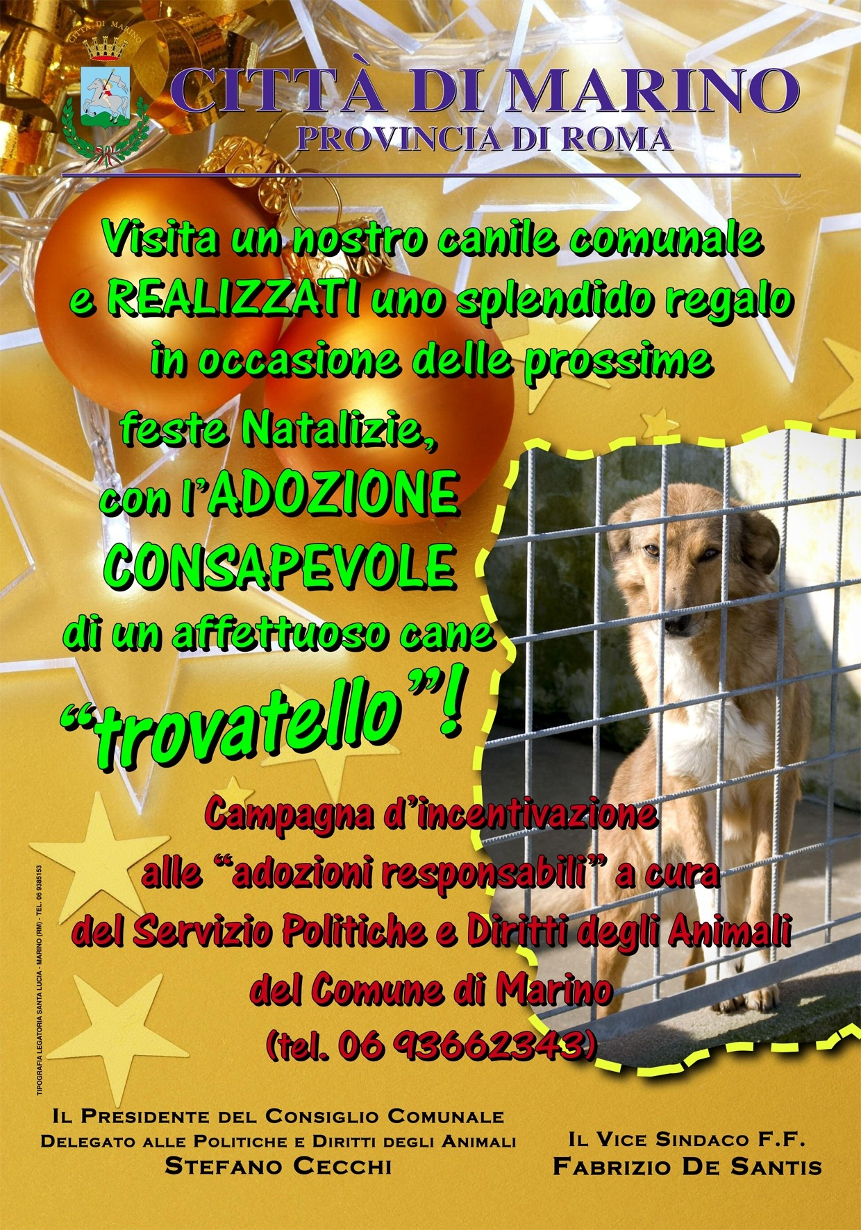 Campagna adozioni cani