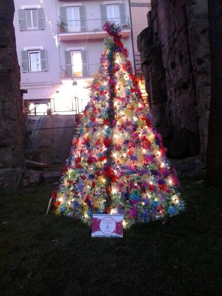 albero del riciclo albano laziale