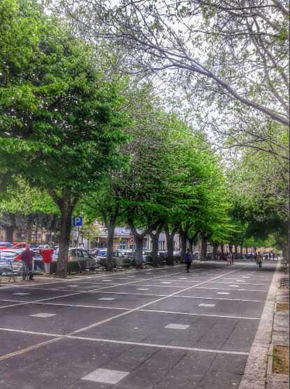 passeggiata_frascati