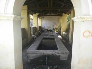 fontanilecolonna