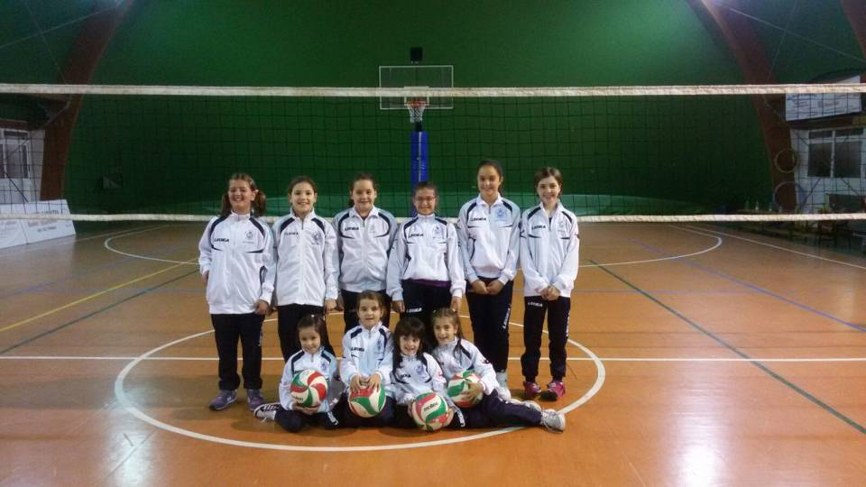 minivolleycolonna