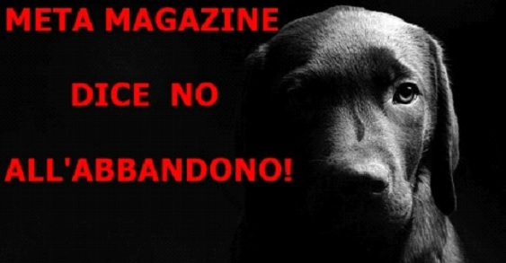metamagazine_dice_no_abbandono