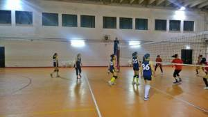 vsg_rosa_volley