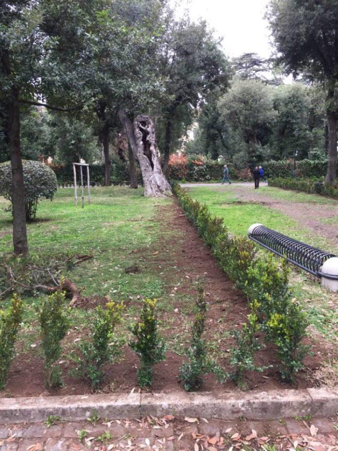 piante_villa_torlonia