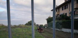 pulizia_parco