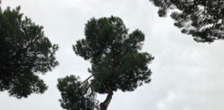 maltempo_frascati