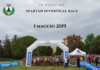 spartan_divertical_race
