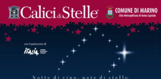 calici_stelle_19