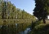 fiume_astura