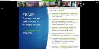 formazione_distanza_parco_castelli_progettazione_europea