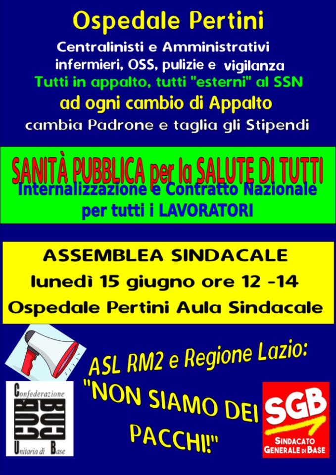 assemblea_pertini_15_06