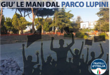 fdi_marino_parco_lupini