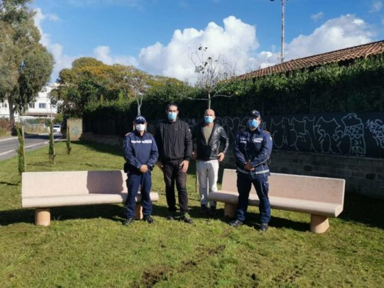 polizia_locale_pomezia_dona_6_alberi