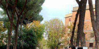 grottaferrta_celebra_giornata_albero