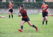 farina_rugby_union