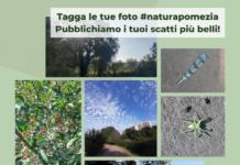 #naturapomezia